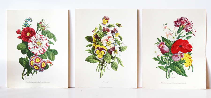 Set of Three 1940s Botanical Lithographs-